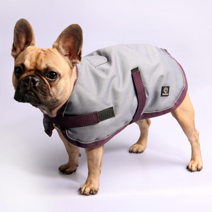 Pet One NightWalker Coat Dog Waterproof Reflective Grey/Burgundy 30cm - 80cm