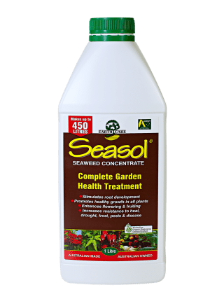Seasol Seaweed Concentrate 1L