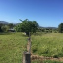 Fertilised pasture holds back drought for local beef producer